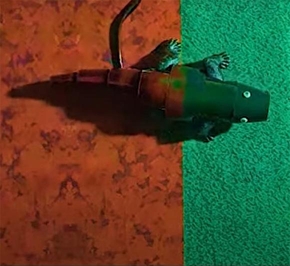 הזיקית הרובוטית בניסוי, מתוך הסרטון:  https://www.youtube.com/watch?v=82eAYWdMU0o