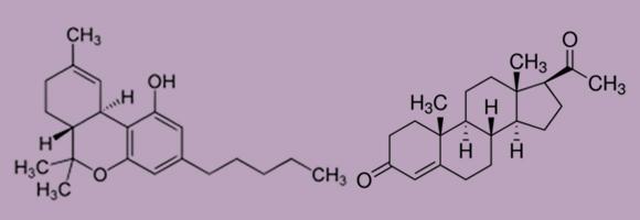נוסחה זהה, חומרים שונים. מימין:פרוגסטרון, משמאל: THC (כל מפגש קווים מציין אטום פחמן) | תרשימים: ויקיפדיה