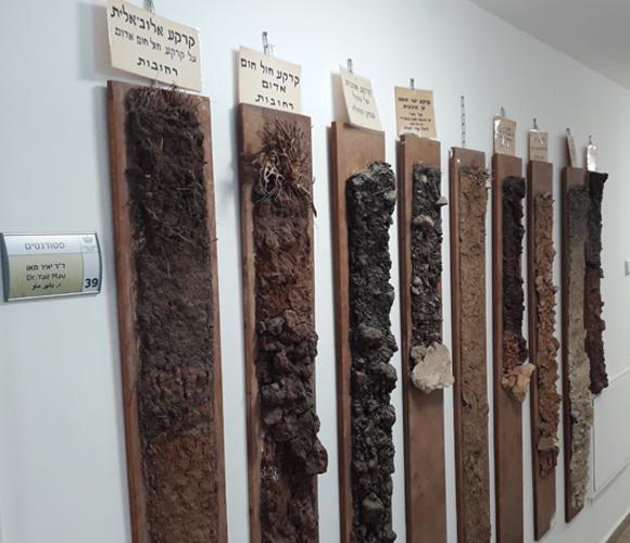 דוגמאות של קרקעות שהכין מוקדי עדיין תלויות בבניין המחלקה לחקר הקרקע והמים בפקולטה לחקלאות | צילום: איתי נבו