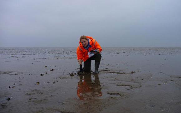 החוקרת ג'ניפר וולש אוספת דגימות בים ואדן | NIOZ