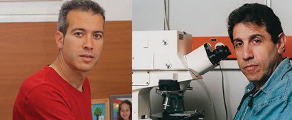 בנימין גייגר (מימין) וערן סגל | צילומים: מכון ויצמן למדע