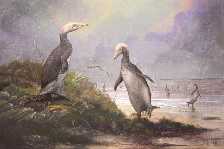 הפלוטופטרידים שהתפתחו בחצי הכדור הצפוני לפני כ-30 מיליון שנה, קרדיט: קרדיט: Mark Witton