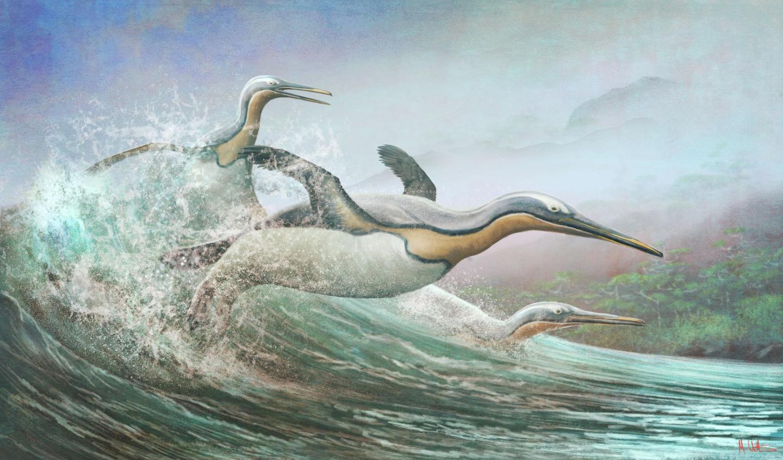 הפינגווינים הענקיים העתיקים מניו-זילנד