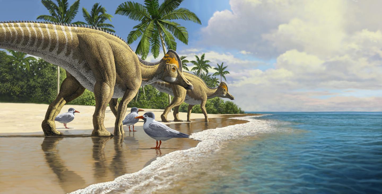 הדרוזאורים ליד החוף, איור: Raul Martin