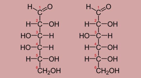 ההבדל היחיד: מיקום המימן (H) וההידרוקסיל (OH) הקשורים לפחמן 4. מימין: גלוקוז; משמאל: גלקטוז | תרשים: מריה גורוחובסקי