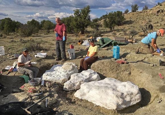 """האתר בו נמצאו המאובנים בדרום יוטה והנוף סביבו   צילום: BLM, באדיבות ד""""ר אלן טיטוס / Flickr"""