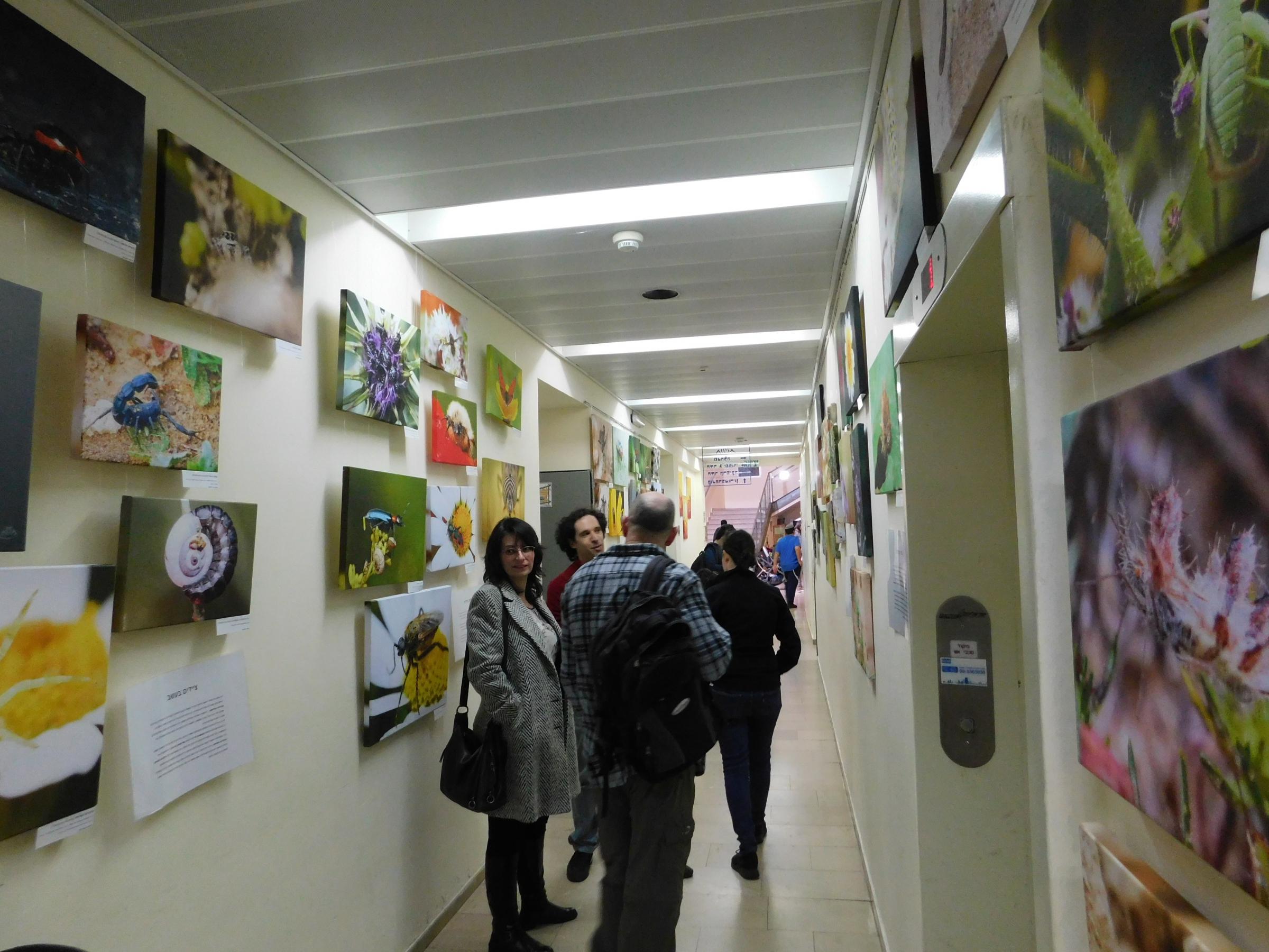 תיעוד שהפך לאמנות. התערוכה הפיזית ביום פתיחתה | צילום: איגור ארמיאץ'-שטיינפרס