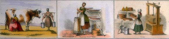 תמונות מתוך איור של Benjamin Waterhouse Hawkins, מ-1850 | Oxford Science Archive, Heritage Images, SPL