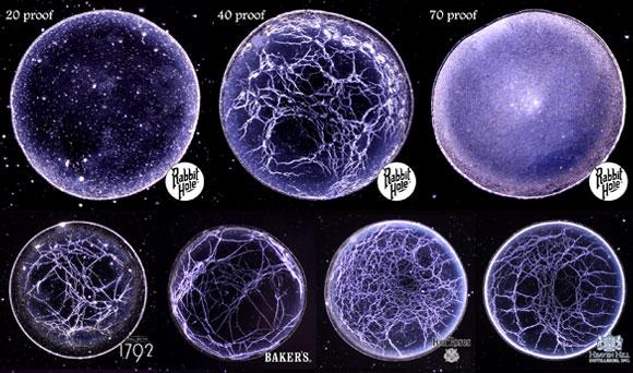 טביעת אצבע של סוגי ויסקי מסוימים   מתוך פוסטר המחקר שהוצג בכינוס האגודה האמריקאית לפיזיקה