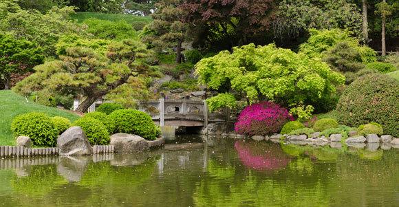 סיור בין כ-14,000 מיני צמחים. הגן הבוטני בברוקלין | צילום: King of Hearts, ויקיפדיה