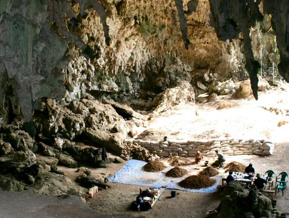 כמעט 200,000 שנות היסטוריה של חולדות ומינים אחרים. מערת ליאנג בואה | צילום: Science photo Library