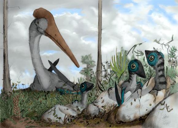 איור של נקבת פטרוזאור ואפרוחיה | קרדיט: Mark P. Witton / Science Photo Library
