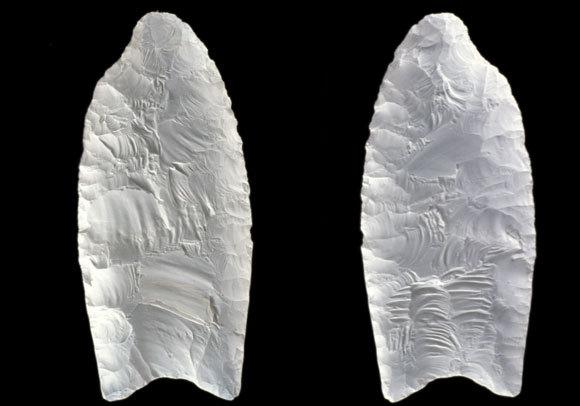 שהיו מחורצים באופן ייחודי להם. ראשי אבן שנמצאו בצפון קרוליינה, ארצות הברית | Carolina Biological Supply Co, Visuals Unlimited, INC., SPL  מי עבר במסדרון?