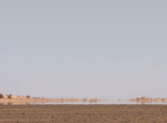 אשליה שנובעת מהבדלי הטמפרטורות בין שכבות האוויר. פאטה מורגנה (מיראז') במדבר בלוב | צילום: DAVID PARKER / SCIENCE PHOTO LIBRARY