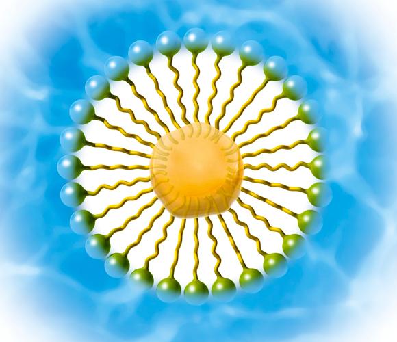 אילוסטרציה של חלקיק סבון | SPL, Claus Lunau