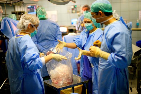 ניתוח השתלת ריאות | צילום: HOP FOCH / PHANIE / SCIENCE PHOTO LIBRARY