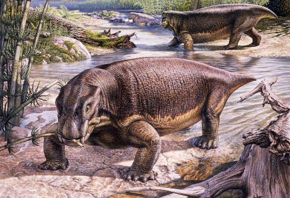 ליסטרוזאורוס בעיני אמן | איור: JOHN SIBBICK / SCIENCE PHOTO LIBRARY
