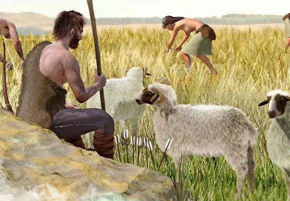 חקלאות בתקופה הניאוליתית | איור: JOSE ANTONIO PENAS / SCIENCE PHOTO LIBRARY