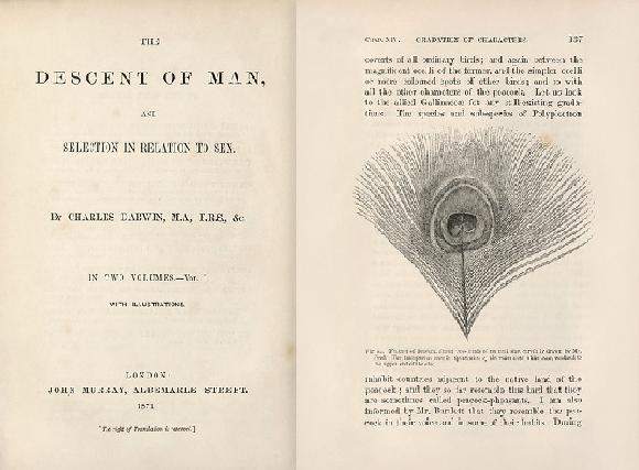 דף השער של הספר ואיור מתוכו | Library of Congress, Rare Book and Special Collections Division, Science Photo Library