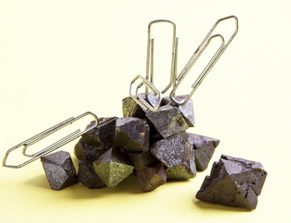 מגנטיט, המינרל המגנטי ביותר הידוע בכדור הארץ, ומהדקי נייר | צילום: Alexandre Dotta / Science Source / Science Photo Library