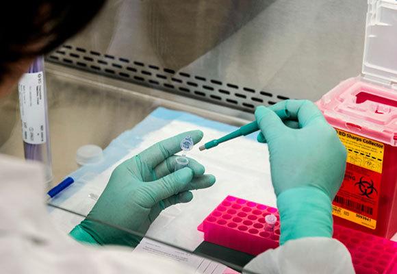 מעבדה לחקר נגיפי קורונה | צילום: JAMES GATHANY / SCIENCE PHOTO LIBRARY