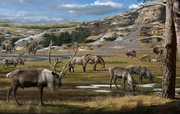 לשחזר את הנוף הפלייסטוקני בסיביר. חיות בר בתקופת הפלייסטוקן | איור: MAURICIO ANTON / SCIENCE PHOTO LIBRARY