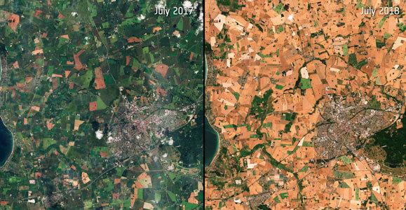 צילום לוויין של שטח חקלאי שנפגע בגל חום באירופה | European Space Agency / Copernicus Sentinel Data / Science Photo Library