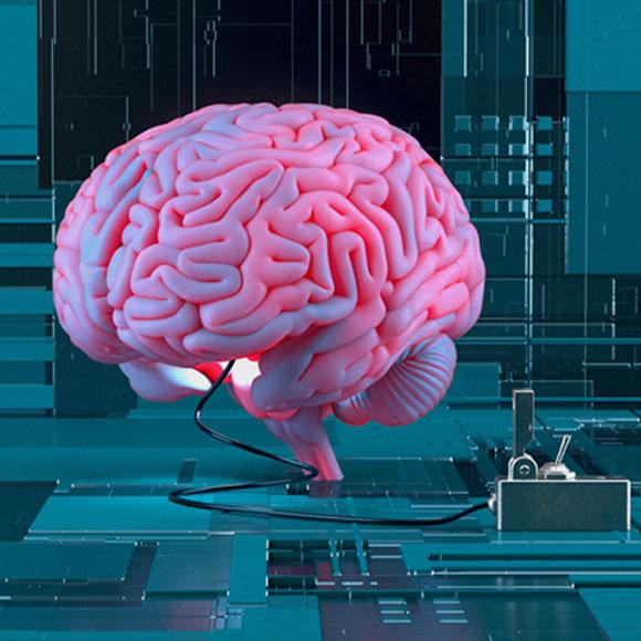 מוח ומעגלי מחשב