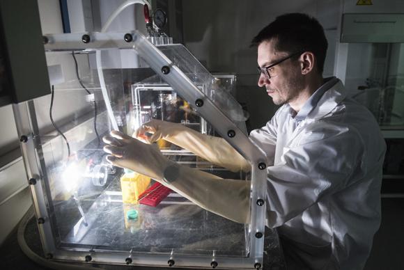 החוקרים ניצלו את דגימות הדם הללו כדי לחקור גם נגיפים ממשפחת הקורונה אשר גורמים לצננת תמונה Shutterstock