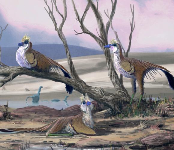 דינוזאורים דמויי-ציפורים שחיו באזור שהיום הוא מונגוליה לפני 113 מיליון שנים | איור: Mark P. Witton / Science Photo Library