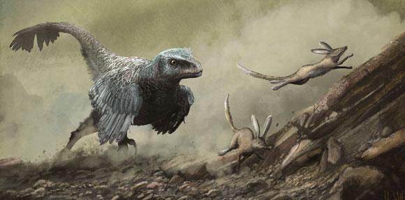 חיו בצל הכבד של הדינוזאורים. ולוסירפטור רודף אחר יונקים קטנים | איור: MARK P. WITTON / SCIENCE PHOTO LIBRARY