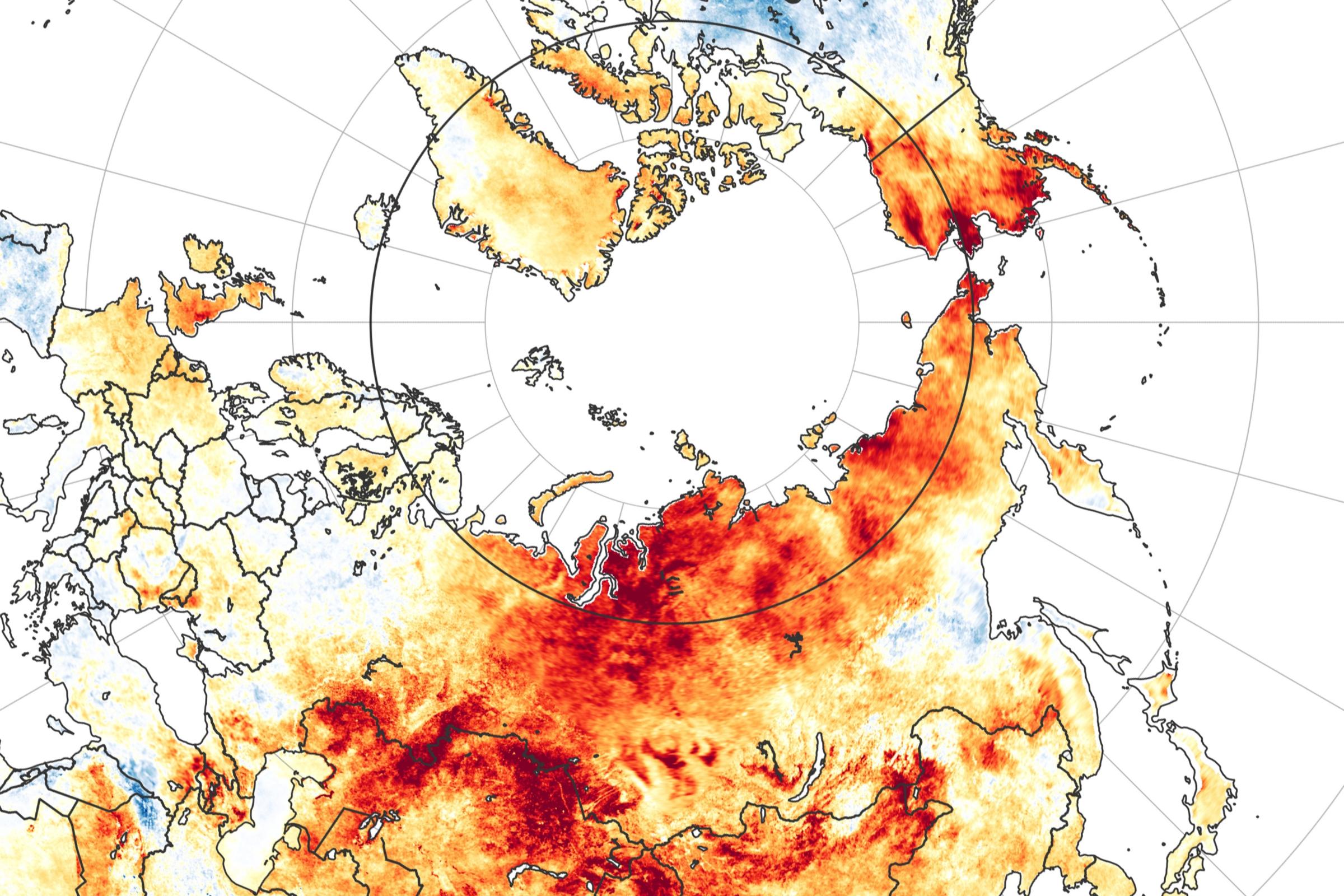 בתמונה: גל החום בסיביר, 2020 | spl