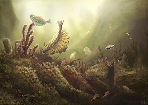 אחרי הפיצוץ הקמבריוני נוצרו מגוון רחב של מינים חדשים, בעלי שכלולים כמו מערכת עיכול ראשונית, כושר תנועה מסוים ומערכת ראייה פשוטה. | איור: MARK P. WITTON / SCIENCE PHOTO LIBRARY
