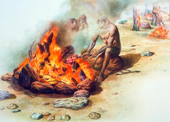 הומו ארקטוס צולים בשר באש | Science Photo Library