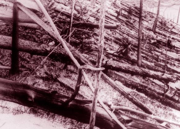 גל ההדף שיטח יותר מ-80 מיליון עצים. צילום של אזור הפיצוץ בשנת 1910 | מקור: SPUTNIK / SCIENCE PHOTO LIBRARY