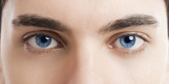 גבות מובחנות | צילום: IKO-studio / Shutterstock