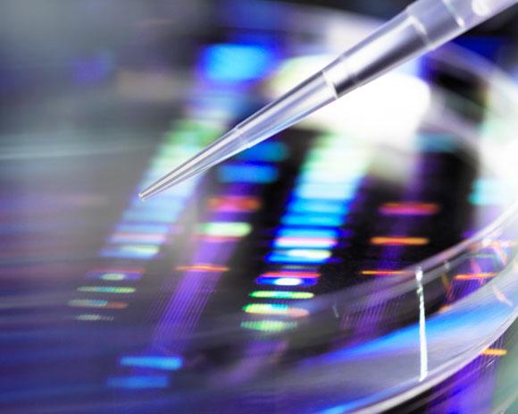 בדיקת DNA   אילוסטרציה: Science Photo Library