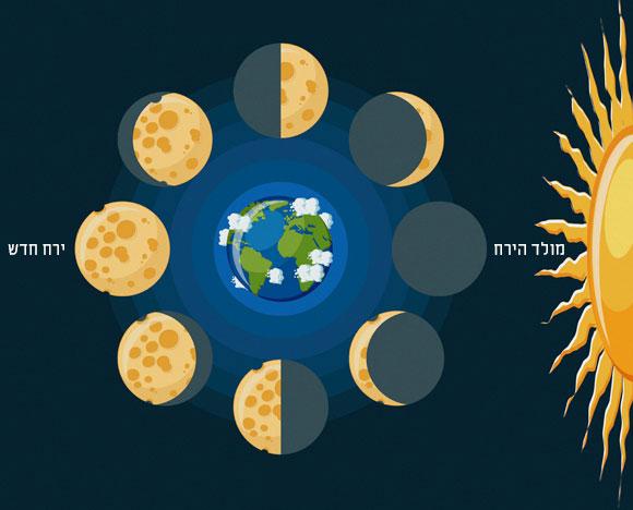 מופעי הירח בשלבים השונים של מסלולו | SPL, Inna Bigun