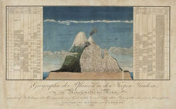 כל הפרטים משתבצים בתמונה הכללית של הטבע. הר צ'ימבורסו ומפת החיים עליו, לפי גובה,  שצייר הומבולדט