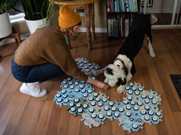 מה אומרים לה? הכלבה באני עם דיוויין, לצד לוח הכפתורים | FluentPet