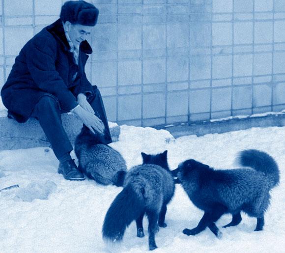 בליאייב משחק עם השועלים הידידותיים | SPL, Sputnik