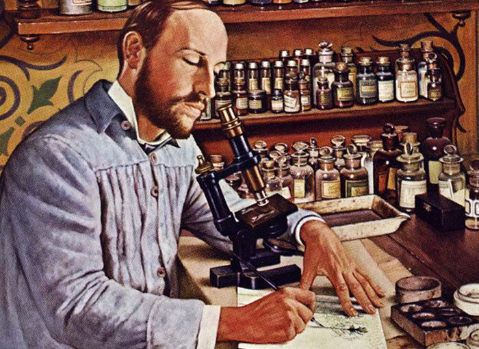 ציור של רמון אי קחל במעבדתו | מקור: SCIENCE SOURCE / SCIENCE PHOTO LIBRARY