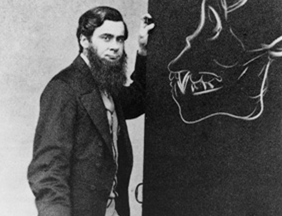 הקסלי. מלומד מול פרא | צילום: מוויקיפדיה, נחלת הכלל