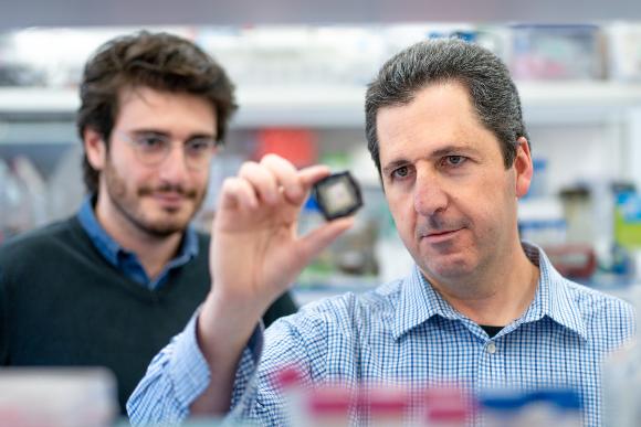 יעקב נחמיאס במעבדה | צילום: דניאל חנוך, האוניברסיטה העברית בירושלים