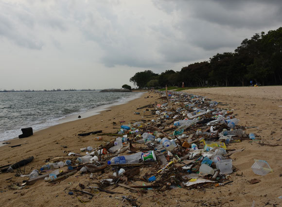 פסולת פלסטיק רבה על חוף בסינגפור | צילום: vaidehi shah, ויקיפדיה
