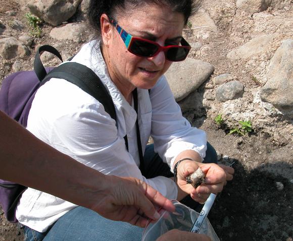 פרופ' עמה גורן אוספת דגימות מאתר גשר בנות יעקב | ויקיפדיה, גונן שרון