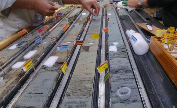 מדענים נוטלים דגימות מתוך החומר שהועלה בקידוחי הקרקעית | צילום: IODP JRSO