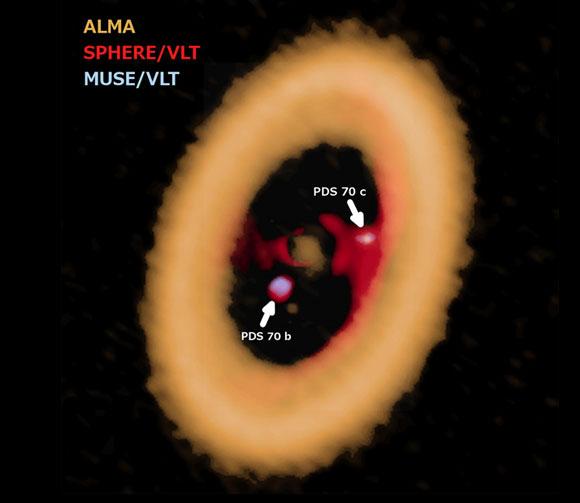 הטבעת הגדולה היא דיסקת הכוכב PDS70, בתוכה שני כוכבי הלכת שלו, והדיסקות הקטנות שמהן נוצרו כנראה ירחיהם | מקור: ALMA (ESO/NAOJ/NRAO) A. Isella; ESO