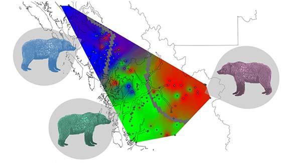 מפת האזור המתמצתת את ממצאי החוקרים | מתוך מאמר המחקר Henson et al