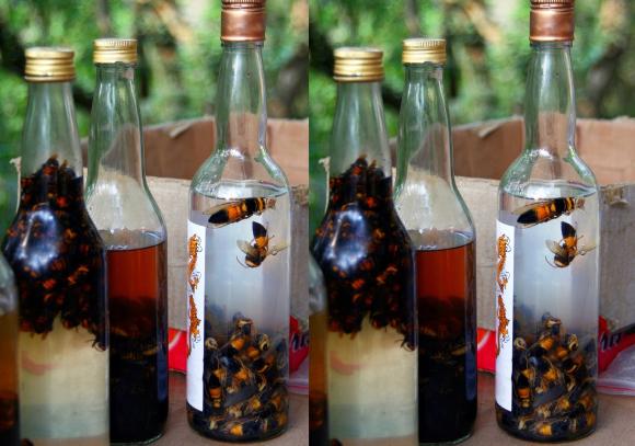 טעם ייחודי. שלבים שונים בהכנת משקה הצרעות | צילום: Katoosha, Shutterstock